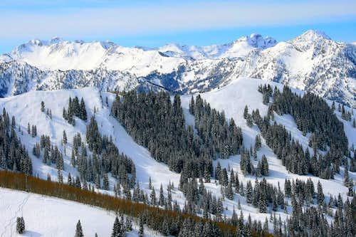 Cottonwood Ridge.