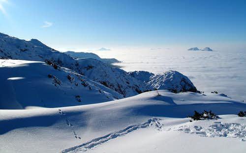 Above-the-clouds scenery on the Untersberg, with animal tracks in the snow
