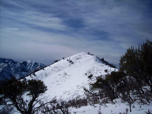 Dale Peak from subpeak