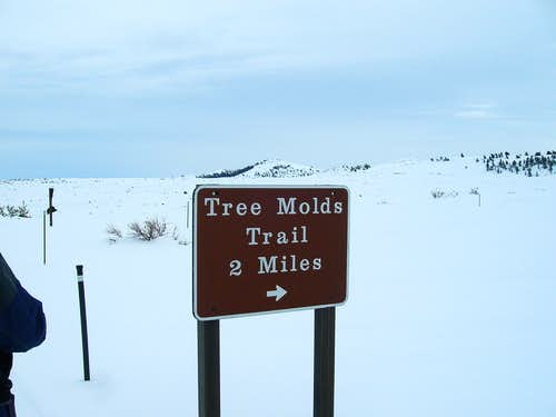 Tree Molds Sign