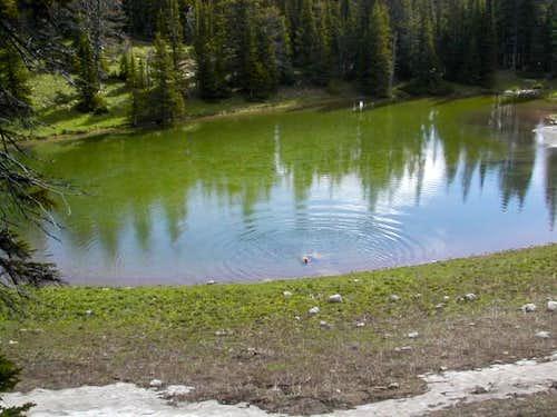 One more shot of a lake at...