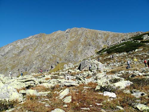 Graukogel (2492 metres)