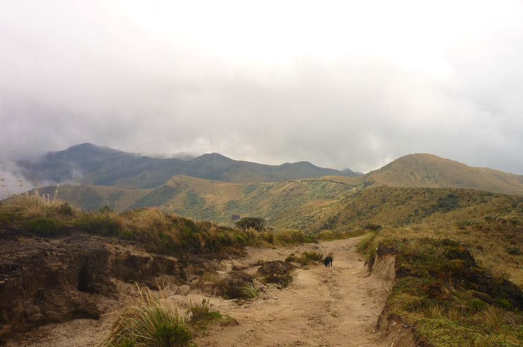 The trail through the páramo