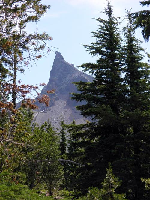 Mt Thielsen framed by trees