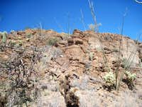 Natural Sonoran Rock Garden