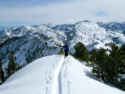 Skinning on Flagstaff Ridge