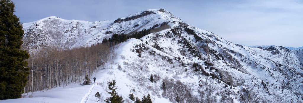 Nelson Peak Ridgeline