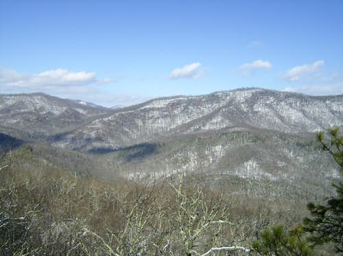 Coontree Mountain View