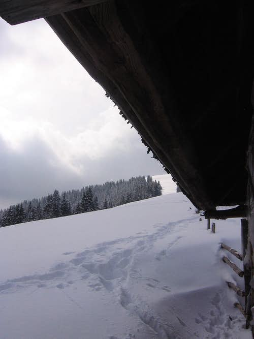 Lot of snow...