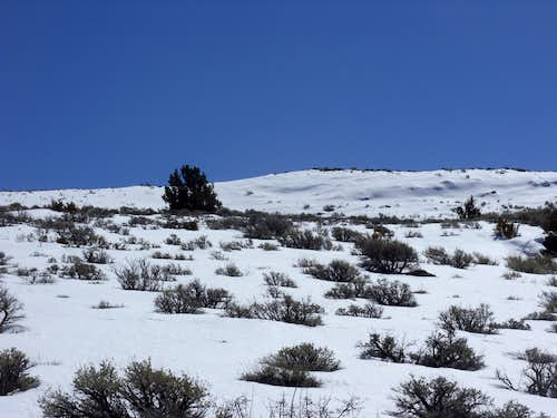 Upper slopes of Spanish Springs Peak in March 2010