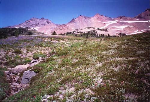The Goat Rocks from Snowgrass...