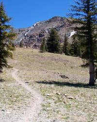 7-13-04 From the saddle...