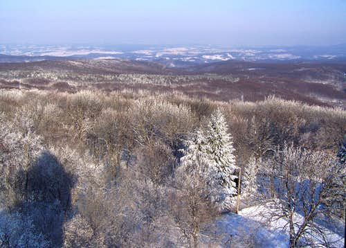 East view from Nagy-Tubes (Mecsek Mountain)