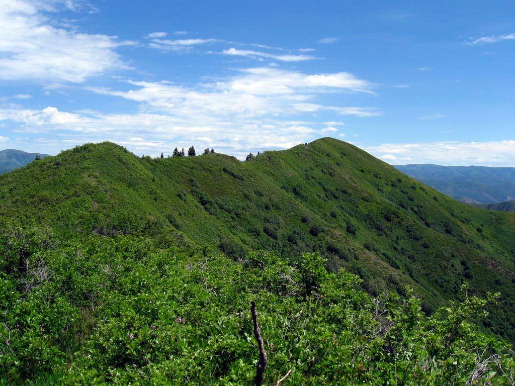 Powerhouse Mountain (UT)