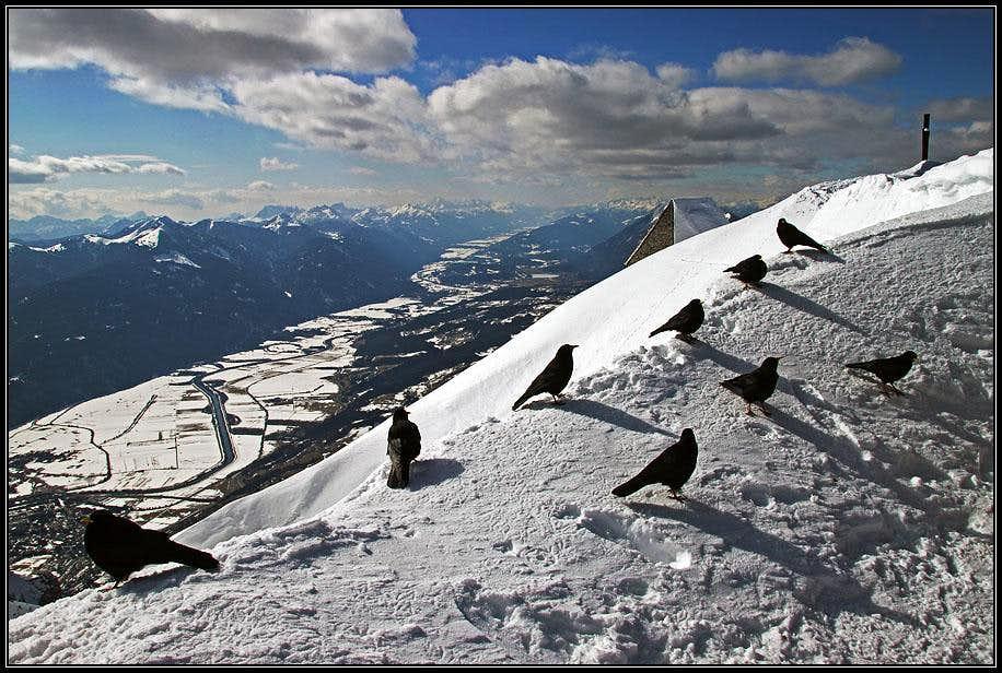 Summit mood on Dobratsch