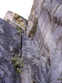 Looking up Pitch 1 of...