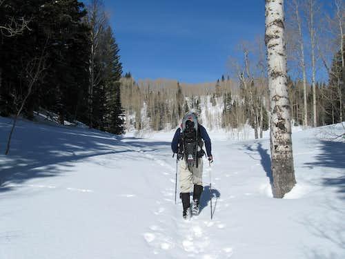Heading for Dog Lake