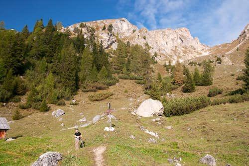 Hochalpenkopf / Cima dei Colli Alti