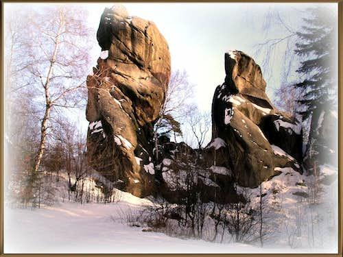 Winter in the Preserve