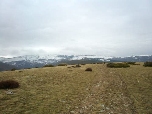 San Millán from the Umbría de los Helechales