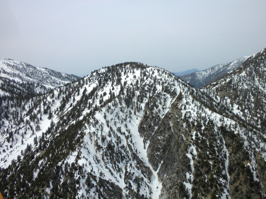 Aerial of Timber