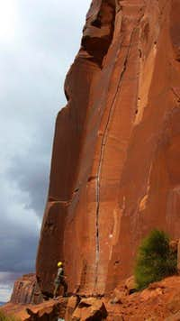 The daunting Scarface (5.11)