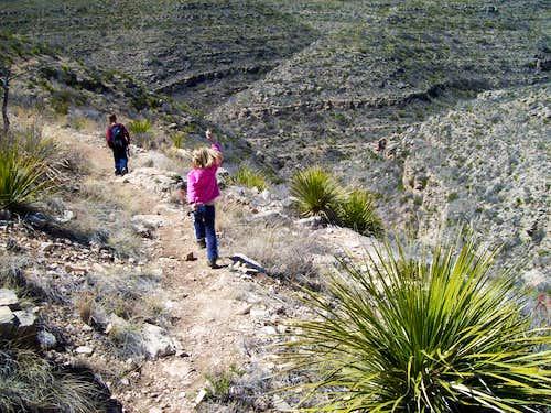 Rattlesnake descent