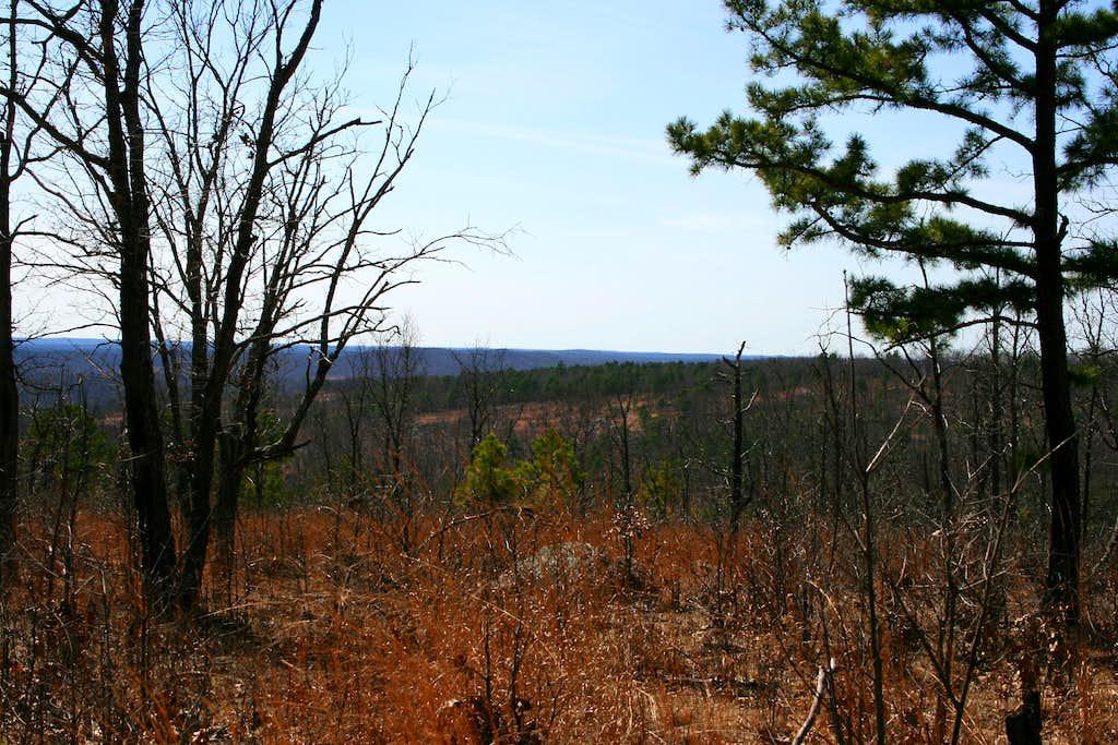 Stegall Summit View