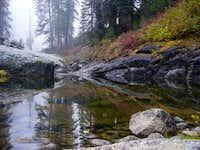 A foggy day at Cargyle creek