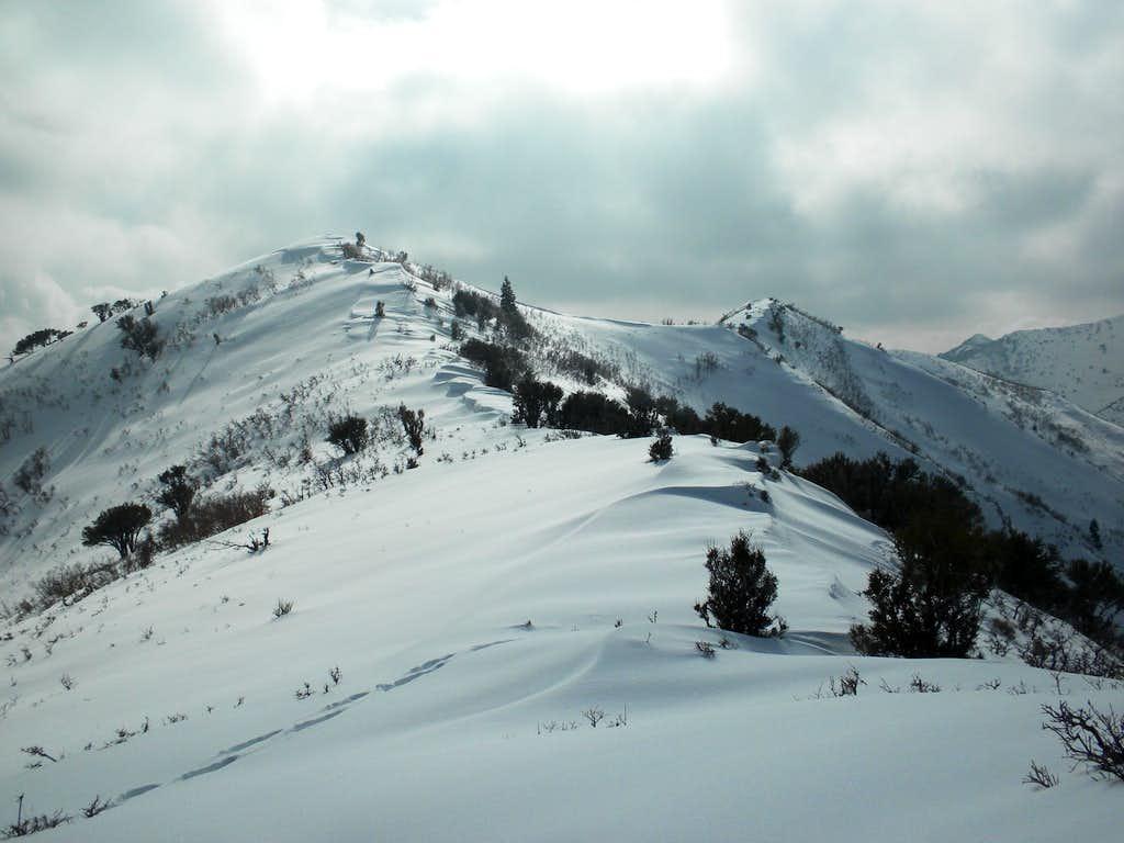 Dale Peak