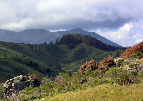 Mt. Tamalpais from Vortac Hill