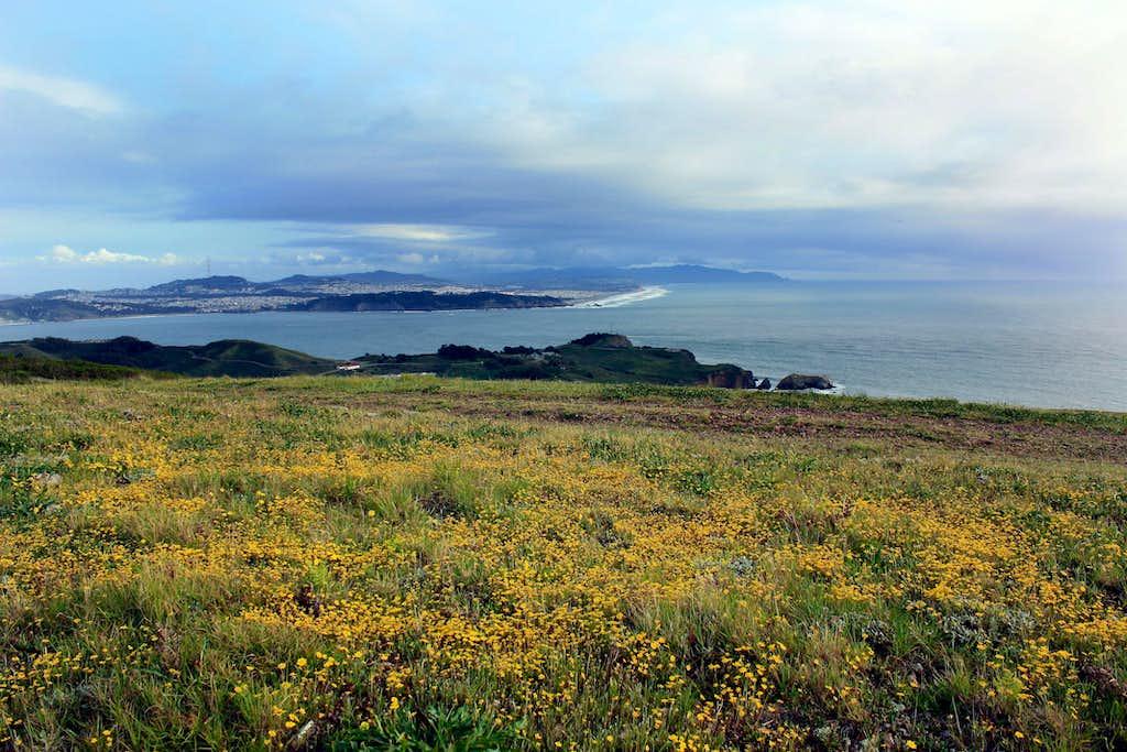 Golden Gate from Wolf Ridge