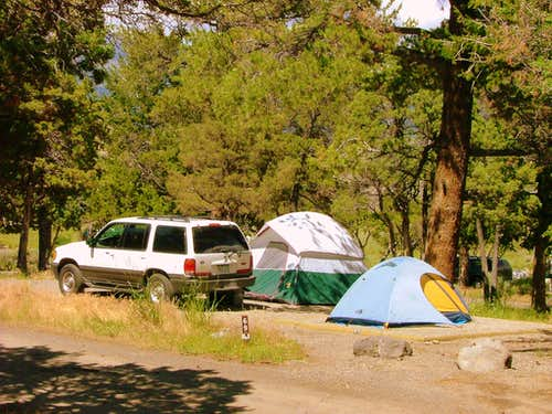 Mammoth Hot Springs Campground.