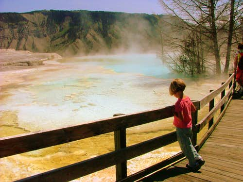 Yellowstone Images.