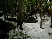 Pond near the summit (3/27/10)