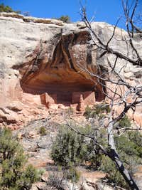 Ruins in Sand Canyon