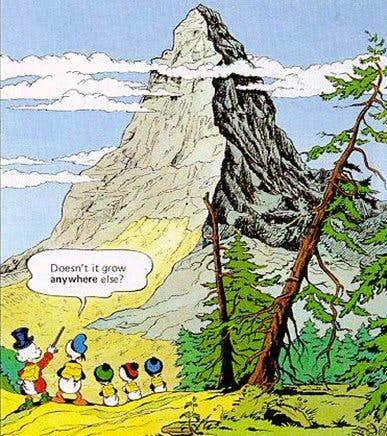 Mountaineer - really? The Matterhorn - of course?