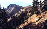 View on the Wheeler Peak...