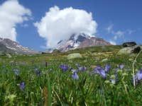 Mount Kazbek (5033m)