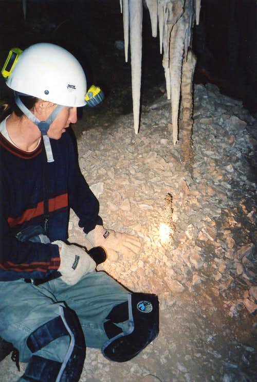 Speleothems in Corkscrew Cave