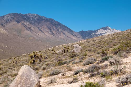 Indian Wells Canyon
