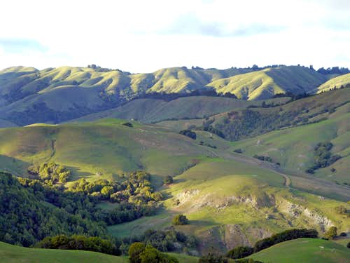 Nicasio hills from Loma Alta