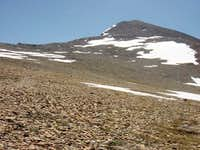On Mt. Dana plateau