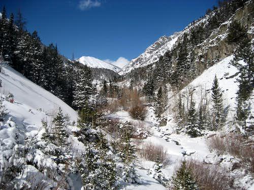 Winter in the Absarokas