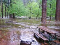 Tenaya Creek in Backpackers\' Campground