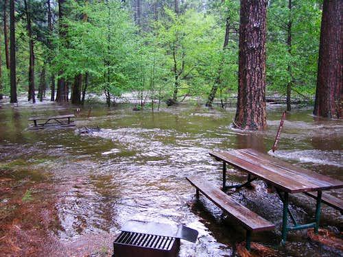 Tenaya Creek in Backpackers' Campground