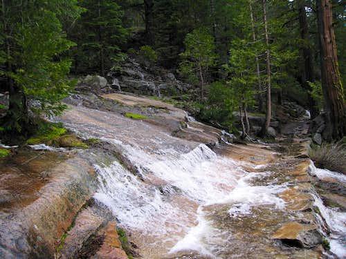 Damp Trail