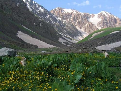 June 21, 2004