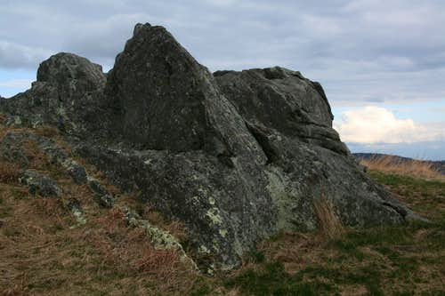 Outcrop in Meadow