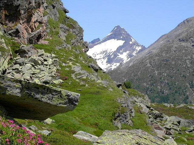 Bortelhorn seen from the west